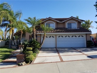 Yorba Linda Single Family Home For Sale: 20460 Via Zaragoza