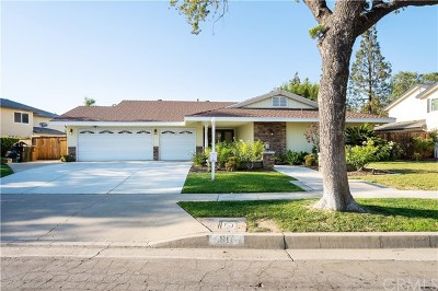 Fullerton Single Family Home For Sale: 1917 Celeste Lane