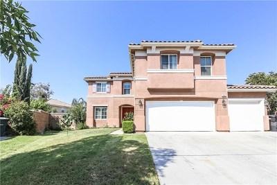 Corona Single Family Home For Sale: 12852 Skokorat Court
