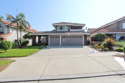 Corona Single Family Home For Sale: 2515 Thistlewood Lane