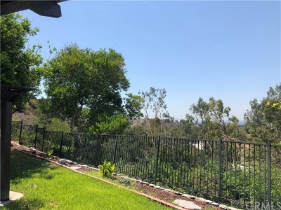 Anaheim Hills Single Family Home For Sale: 6421 E Shady Valley Lane
