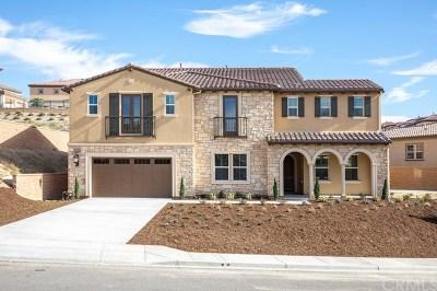 Yorba Linda Single Family Home For Sale: 4090 Duke Drive