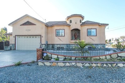 Garden Grove Single Family Home For Sale: 12011 9th Avenue