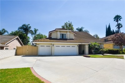 Yorba Linda Single Family Home For Sale: 17430 Abbey Lane