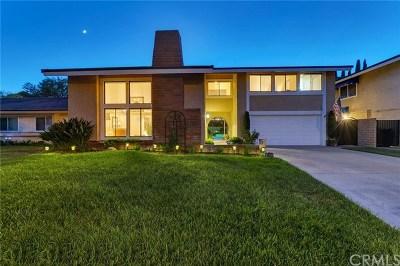 Yorba Linda Single Family Home For Sale: 4801 Orlando Drive