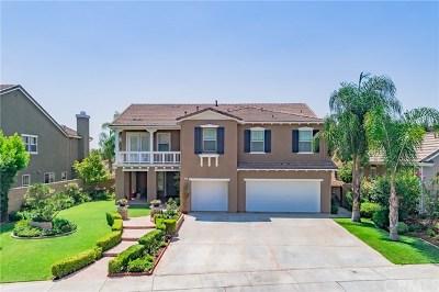 Brea Single Family Home For Sale: 449 Brea Hills Avenue