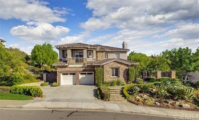 Yorba Linda Single Family Home For Sale: 3846 Zaharias