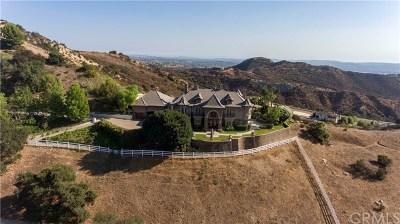 Modjeska Canyon, Silverado Canyon Single Family Home For Sale: 28012 Modjeska Grade Road