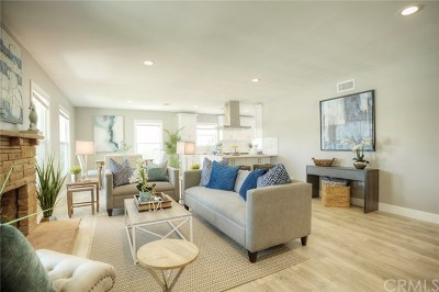 Orange Single Family Home For Sale: 462 N Shattuck Place