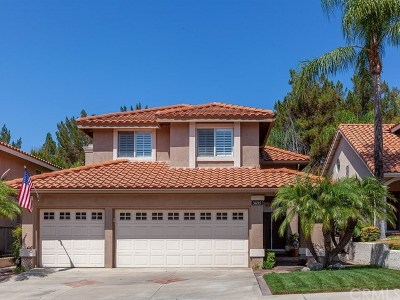 Yorba Linda Single Family Home For Sale: 5695 Southview Drive