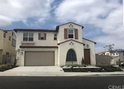 Lake Elsinore Single Family Home For Sale: 39779 Strada Firenza