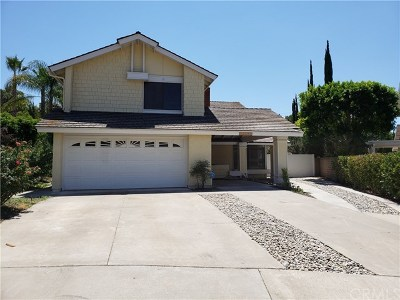 Laguna Hills Single Family Home For Sale: 24572 Ashland Drive