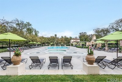 Orange County Condo/Townhouse For Sale: 60 Burlingame
