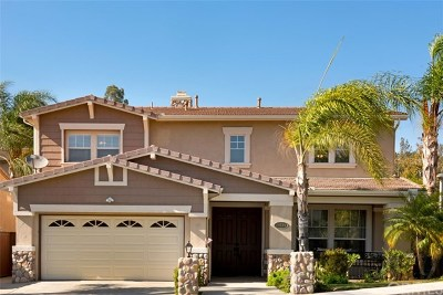 Yorba Linda Single Family Home For Sale: 24221 Rancho Santa Ana Road