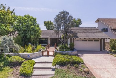 Anaheim Hills Single Family Home For Sale: 552 S Circulo Lazo