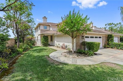 Anaheim Hills Single Family Home For Sale: 895 S Country Glen Way