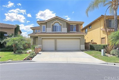 Tustin Single Family Home For Sale: 2540 Schooley Drive