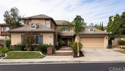 Anaheim Hills Single Family Home Active Under Contract: 8208 E Bailey Way