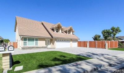 Anaheim Single Family Home For Sale: 6331 E Via Arboles