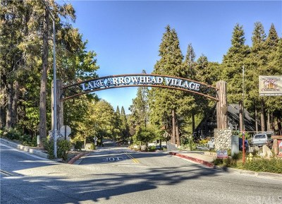 Lake Arrowhead Single Family Home For Sale: 27661 Canyon Drive