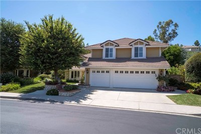 North Tustin Single Family Home For Sale: 9661 Norfolk Drive