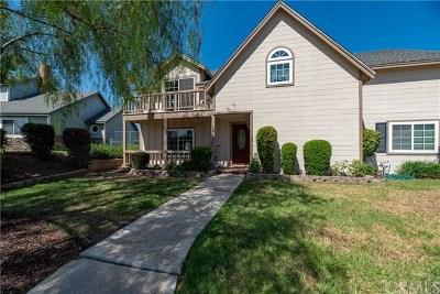 Corona Single Family Home For Sale: 7213 Piute Creek Drive