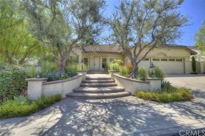 Yorba Linda Single Family Home For Sale: 24580 Avenida De Marcia
