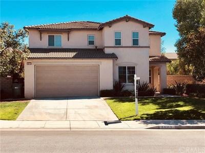 Menifee Single Family Home For Sale: 28313 Parkdale Lane