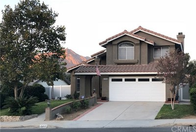 Corona Single Family Home For Sale: 26600 Black Horse Circle