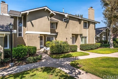 Irvine Condo/Townhouse For Sale: 6 Cheyenne #29