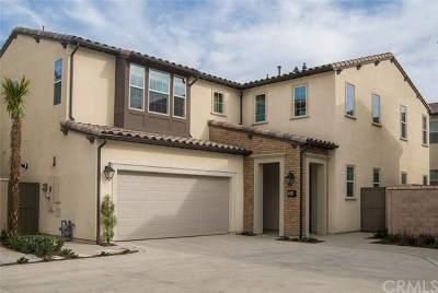 Whittier Single Family Home For Sale: 16243 Cameo Court