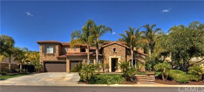 Yorba Linda Single Family Home For Sale: 19927 Trotter Lane