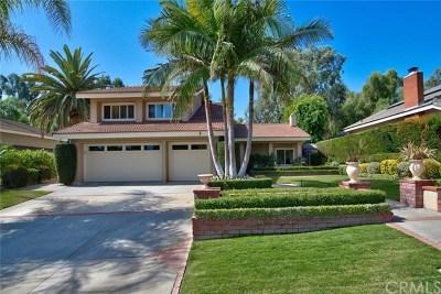 Yorba Linda Single Family Home For Sale: 5311 Via Bernardo