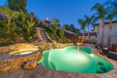 Yorba Linda Single Family Home For Sale: 17261 Fremont Lane