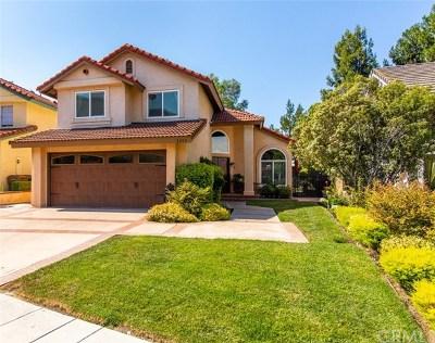 Yorba Linda Single Family Home For Sale: 23130 Sleeping Oak Drive