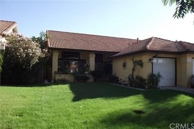 Hemet, San Jacinto Single Family Home For Sale: 1087 Serena Drive
