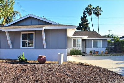 Carson Single Family Home For Sale: 518 E Kenbridge Drive
