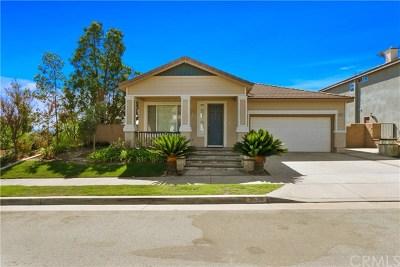 Brea Single Family Home For Sale: 3679 Skylark Way