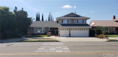 Orange Single Family Home For Sale: 820 S Yorba Street