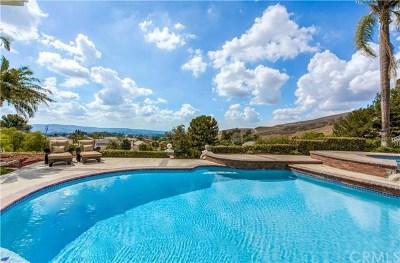 Yorba Linda Single Family Home For Sale: 3455 Condor Ridge Road