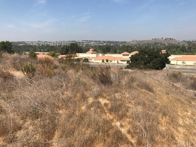 Anaheim Hills Residential Lots & Land For Sale: Santa Ana Canyon Road E
