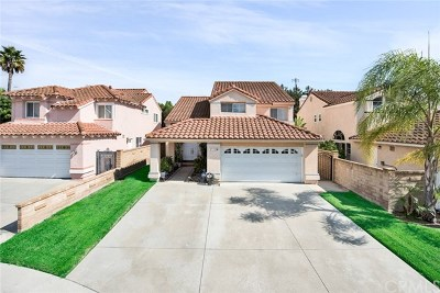 Mission Viejo Single Family Home For Sale: 25202 Misty Ridge