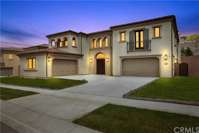 Irvine Single Family Home For Sale: 113 Nest Pine