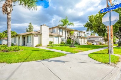 Redlands Multi Family Home Active Under Contract: 1250 Tribune Street