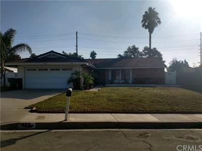 Rialto Single Family Home For Sale: 269 S Loretta Street