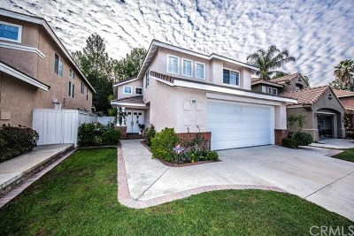 Anaheim Hills Single Family Home For Sale: 1119 S Silver Star Way