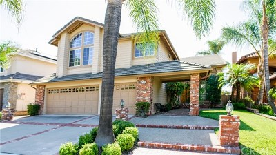 Trabuco Canyon Single Family Home For Sale: 21493 Silvertree Lane