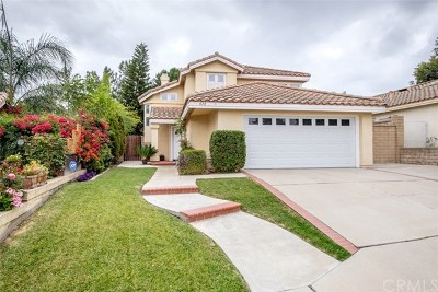 Anaheim Hills Single Family Home For Sale: 828 S Wildflower Lane