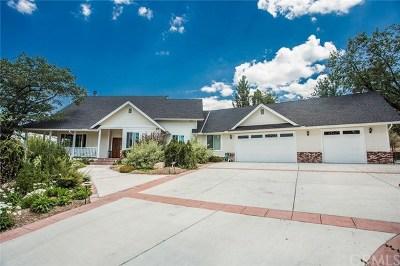 Big Bear Single Family Home For Sale: 42396 Golden Oak Road