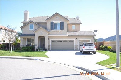 Murrieta Single Family Home For Sale: 42598 Sauternes Lane